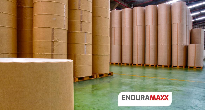 Enduramaxx Pulp & Paper Wastewater Treatment